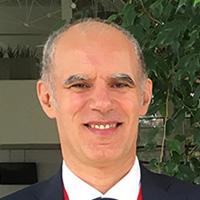 Marco Enrico Ricotti